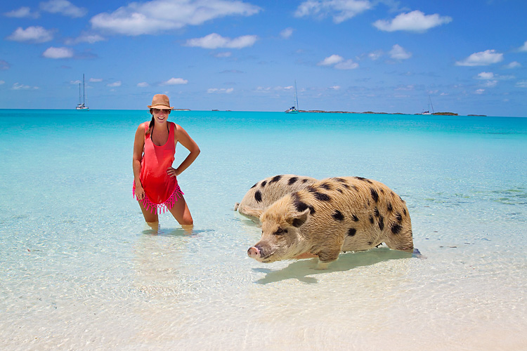 Sailing-Blog-Cruising-Bahamas-Caribbean-Exumas-Big-Major-Spot-Staniel-Cay-Pig-Beach-Swim-With-the-Pigs-LAHOWIND-eIMG_4188