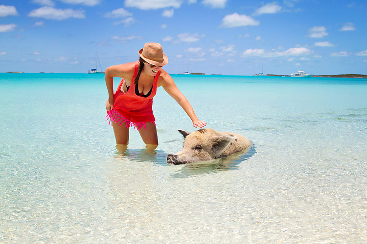 Sailing-Blog-Cruising-Bahamas-Caribbean-Exumas-Big-Major-Spot-Staniel-Cay-Pig-Beach-Swim-With-the-Pigs-LAHOWIND-eIMG_4236