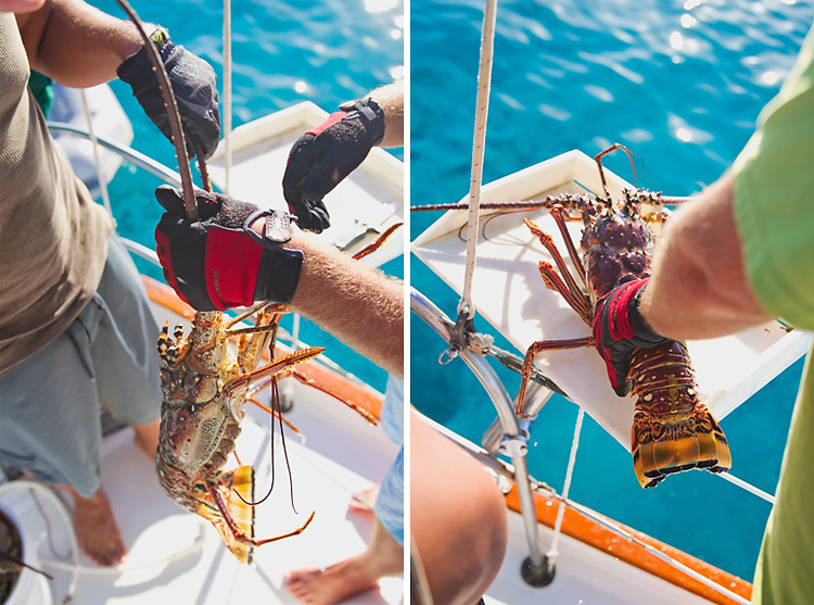 Sailing-Blog-Cruising-Caribbean-USVI-St.-Thomas-Lobster-Hunting-Diving-Photos-LAHOWIND-Young-Couple-Boat-Life-2
