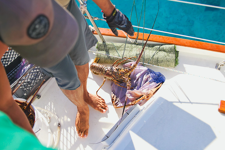 Sailing-Blog-Cruising-Caribbean-USVI-St.-Thomas-Lobster-Hunting-Diving-Photos-LAHOWIND-Young-Couple-Boat-Life-eIMG_7659