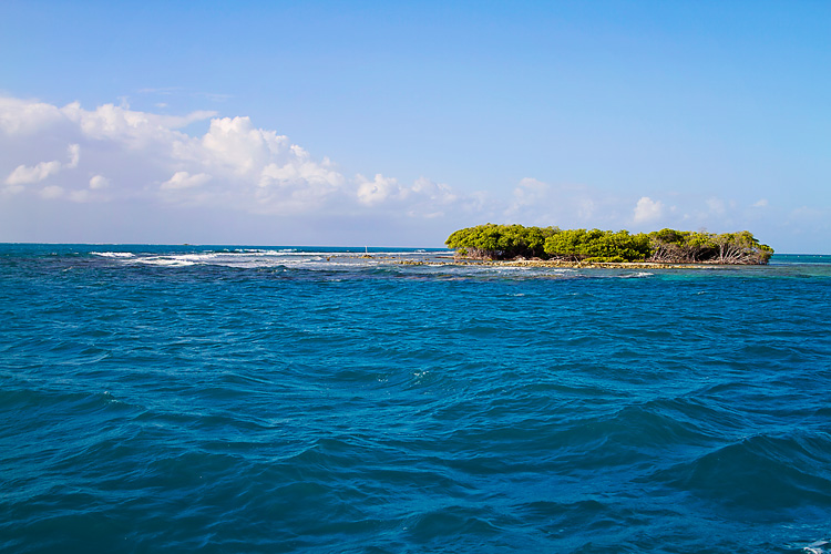 Sailing-Blog-Cruising-Caribbean-Puerto-Rico-Parguera-Cayo-Enriquee-to-Puerto-Real-LAHOWIND-Lighthouse-Dolphin-Photos-2015-eIMG_3243