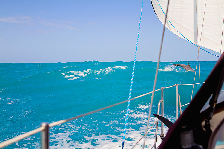 Sailing-Blog-Cruising-Caribbean-Puerto-Rico-Parguera-Cayo-Enriquee-to-Puerto-Real-LAHOWIND-Lighthouse-Dolphin-Photos-2015-eIMG_3334
