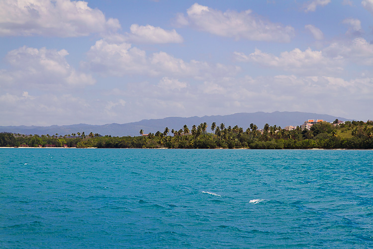 Sailing-Blog-Cruising-Caribbean-Puerto-Rico-Parguera-Cayo-Enriquee-to-Puerto-Real-LAHOWIND-Lighthouse-Dolphin-Photos-2015-eIMG_3430
